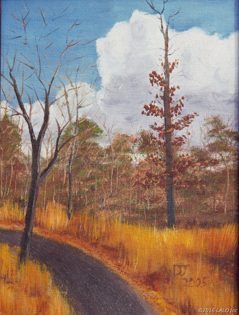 Country Road by Donna Jeanne Werley