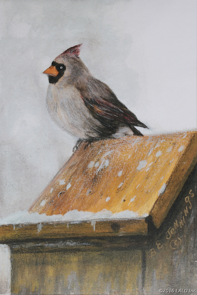 Winter Cardinal by Barbara E. Jennings