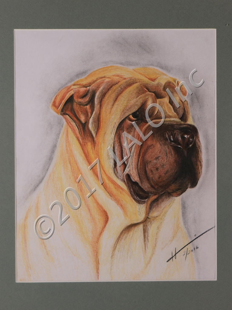 The SharPei by Hannia Smith