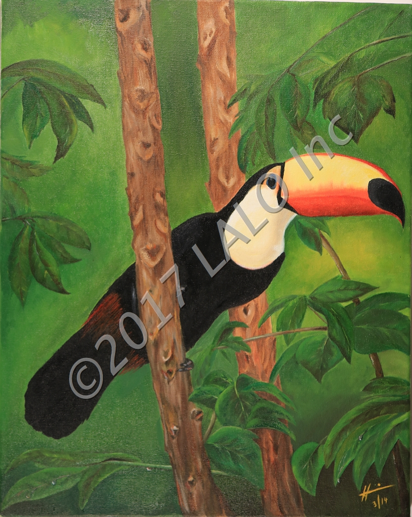 Toucan by Hannia Smith