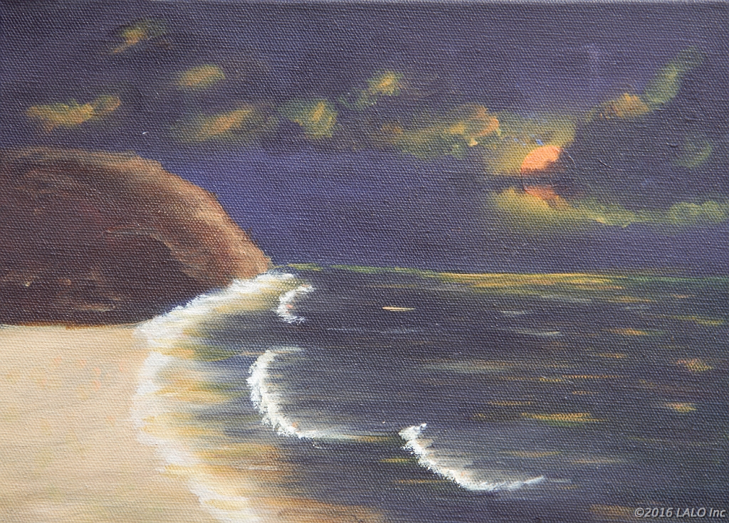 Moon Beach by Donna Jeanne Werley