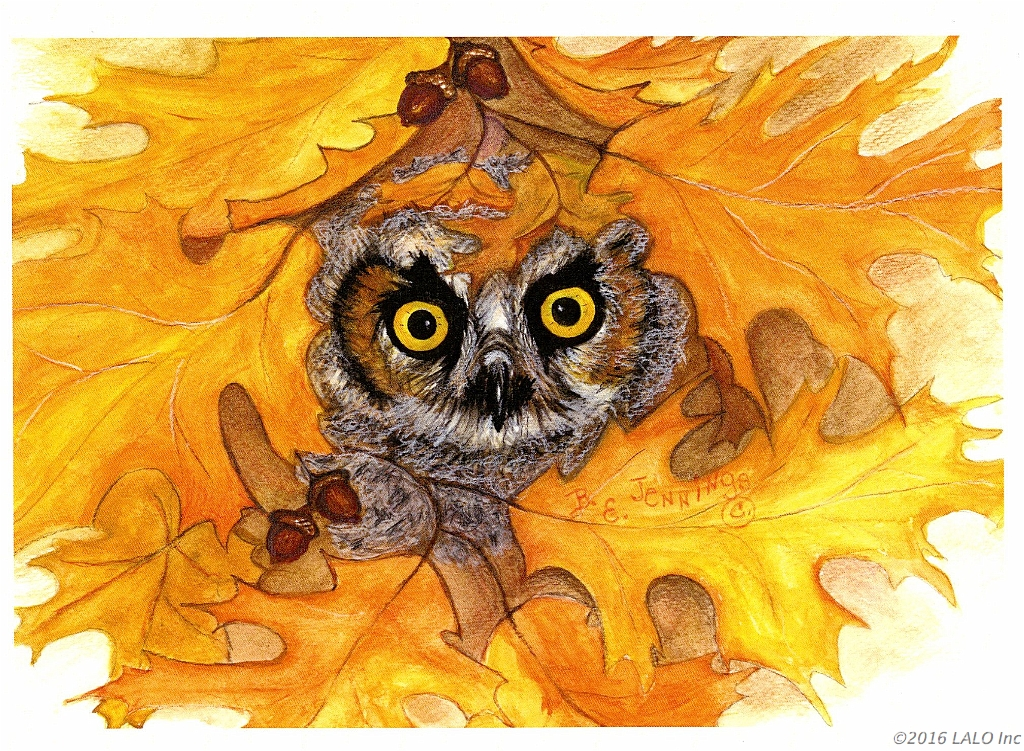 Autumn Owl Wisdom by Barbara E. Jennings