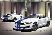 1966-2016 Ford Mustang Shelby GT350 - The Legend Lives by Danny Whitfield